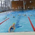 2016 Schwimmen Ausdauerstaffel (Small)