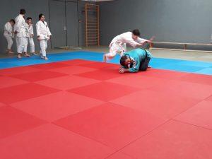 HP 2018 Judoprojekt3