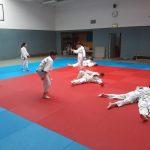 HP 2018 Judoprojekt5